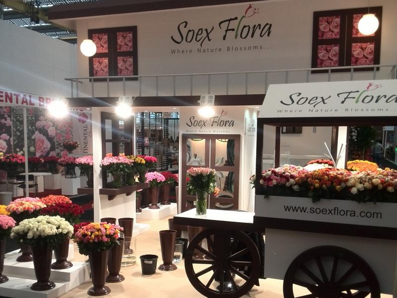 Soex Flora